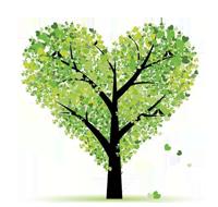 爱木者   以爱木之心敬木